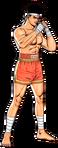 Joe Higashi Spirit