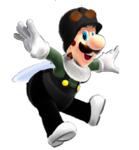 Fly Luigi