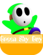 Green Shy Guy MR