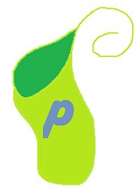 Pea Bomb Pouch