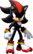 Team Sonic Racing Shadow No Car