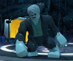 LEGOSolomonGrundyProfile