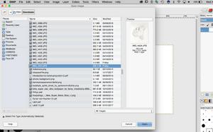GIMP Step2