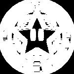 StarCupRaceAlt