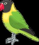 Birdhouse nintenzoo