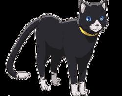 Morgana (Cat form)