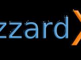 Blizzard X