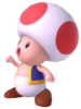 1.3.Toad looking up