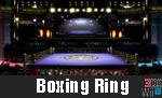 BoxingRing3DSWiiUSSBReborn