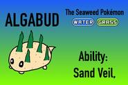 AlgabudInfo2