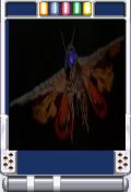 Mothra 2001