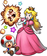 MLSS+BM Artwork - Peach and Toad