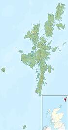 Shetlandpony loc