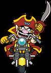 CaptainWarioGW
