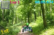 Luigi warioswoods
