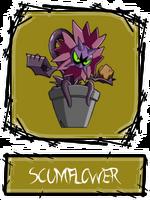 Scumflower SSBR