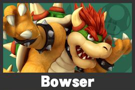Bowser mugshoot