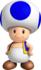 Blue Toad NSMBW2:BB