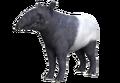 Tapir Fallout Origins