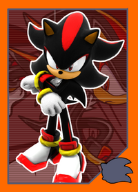 KingdomFightersTC ShadowtheHedgehog