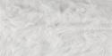 SFL ArcticFox