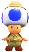 0.9.Smart Toad