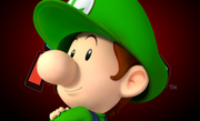 Baby LuigiDSR