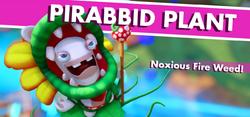 PirabbidPlant Tagline