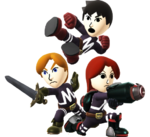 Fighting Mii Team