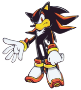 ShadowHedgehog