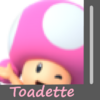 Toadette Image