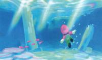 CoralSeaside SM64S