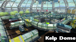Kelp Dome Splatoon Tint