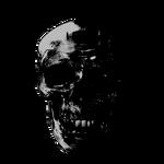 TerminatorIcon