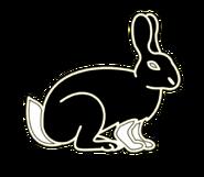 Cream Hare