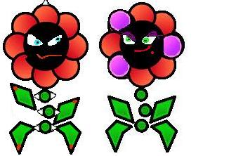 Floro group
