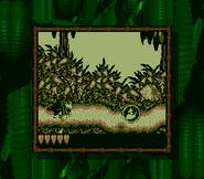 JungleJauntDKLBeginning