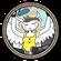 Skiene ZF Icon