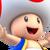 Toad Spirit Icon SSBE