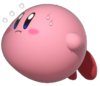 1.4.Kirby floating and sweating
