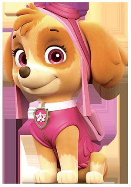 Image Skye Paw Patrol Png Fantendo Nintendo Fanon Wiki Fandom Powered By Wikia
