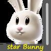 Star Bunny Image