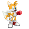 1.Tails 5-Tails with Boxing Glove