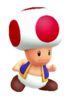 Toad (MP10) 5