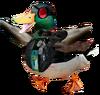 Future duck