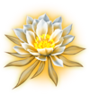 Dragonflower C