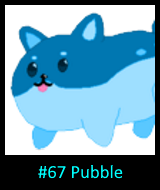 Fsbc67pubble