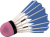 DumbrellaShuttlecock