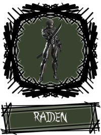 Raiden SSBR