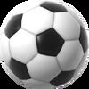 Fig 20 soccerball